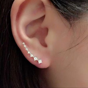 Jewelry - Gold or Silver Earrings